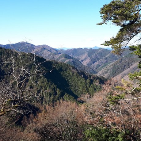 A Visit to Mt. Takao